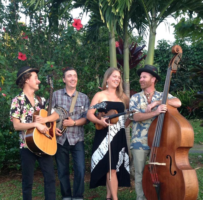 Aloha Bluegrass 2015 pic