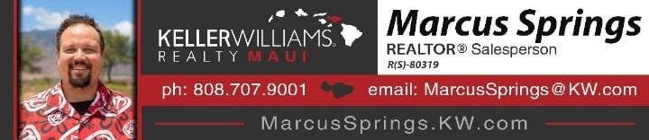 Marcus Springs logo